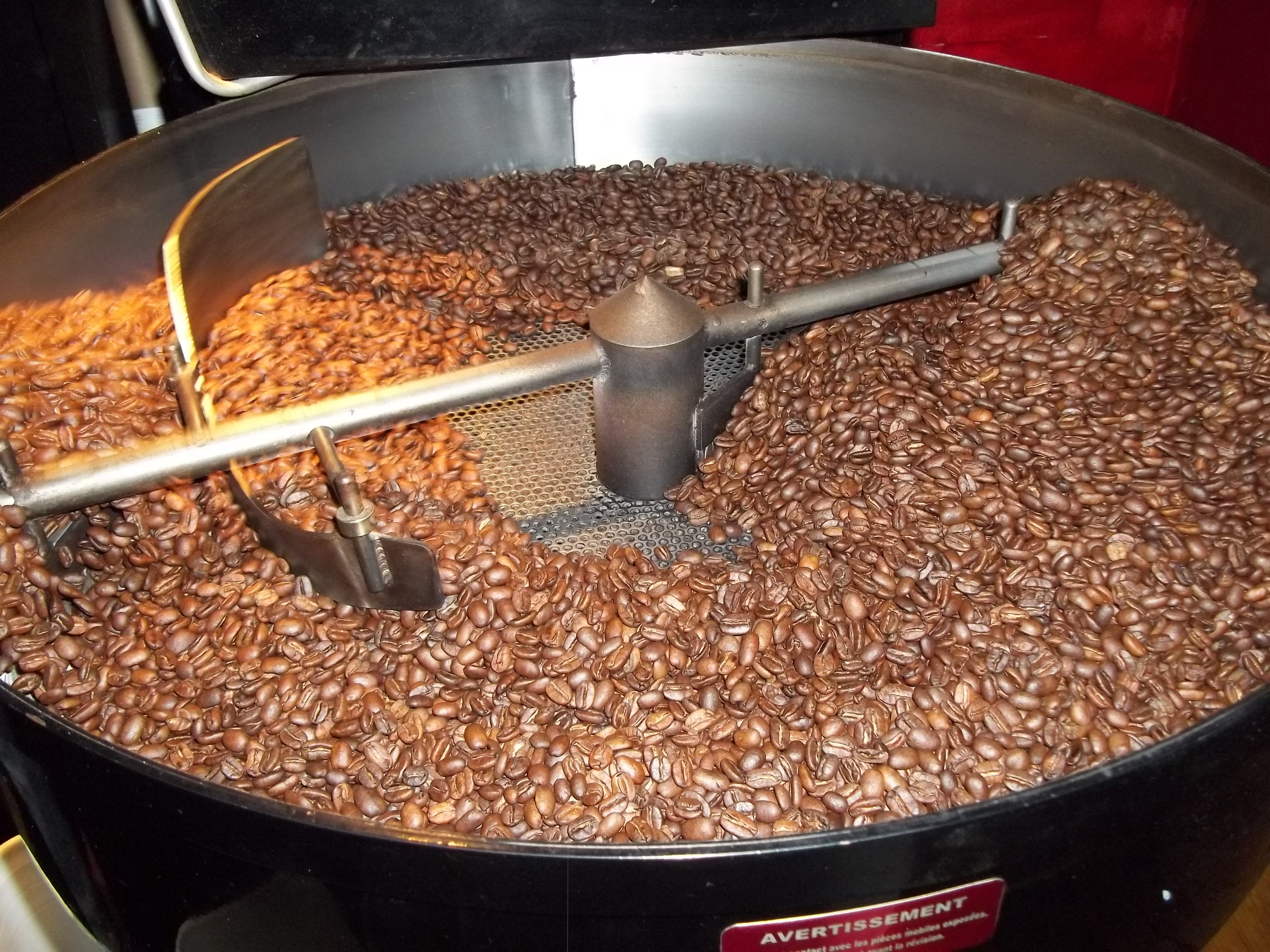 Green coffee beans have been roasted and are now cooling