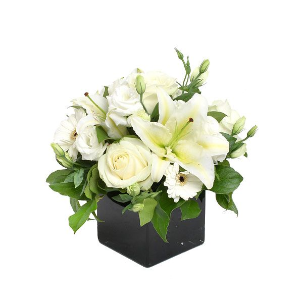 Pearly white would spray with silver or gold spray for christmas floral arrangement pearly white would spray with silver or gold spray for christmas mightylinksfo