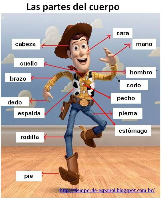 Spanish - parts of the body (using Woody from Toy Story) -- have the ...