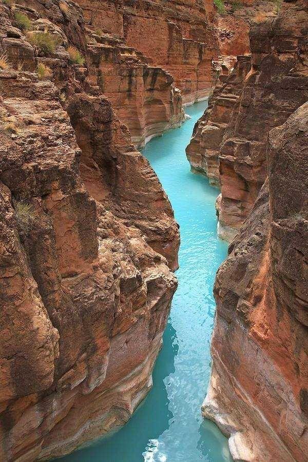 Mouth of Havasu Creek, Arizona. [600x900] [OC] [OS]