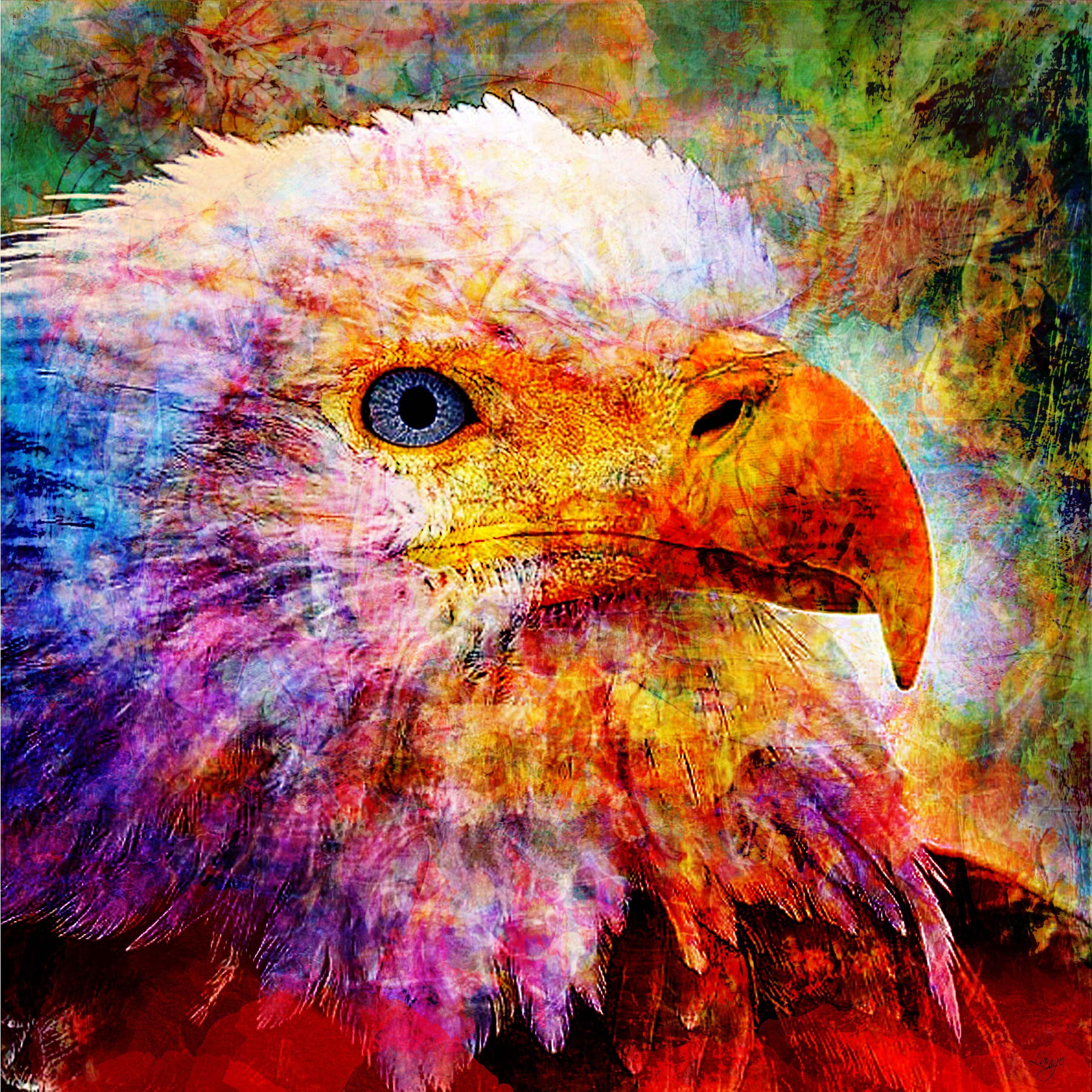 Aigle royal par idolie en 2019 aigle royal dessin et aigle - Dessin d aigle royal ...