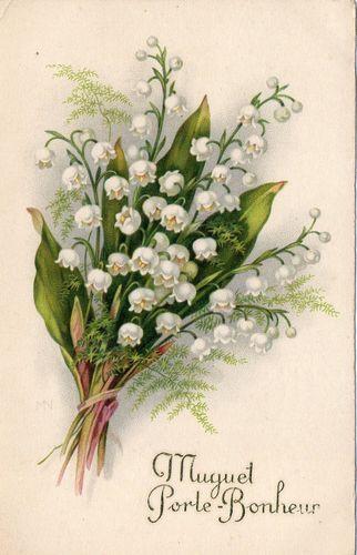 Cpa muguet porte bonheur 1934 muguet lily of the valley pinterest muguet porte bonheur - Image muguet porte bonheur ...