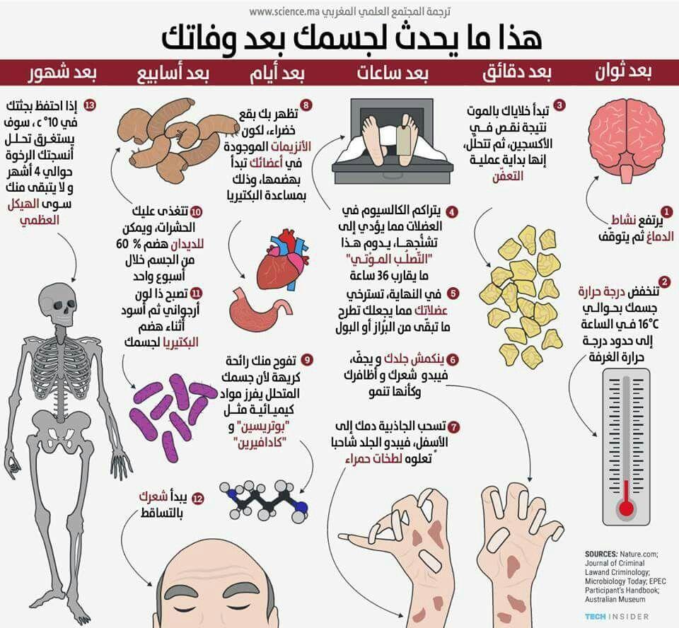 هذا ما يحدث لجسمك بعد الموت.