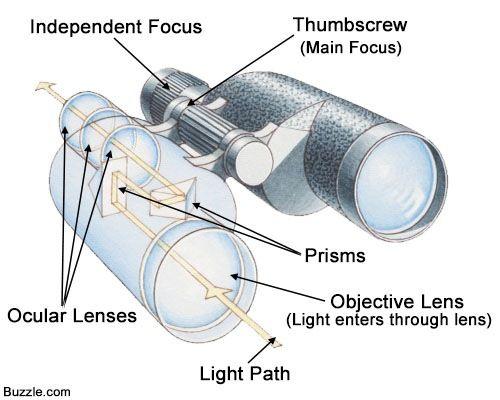 Parts of binoculars | Diagramatically Speaking | Pinterest