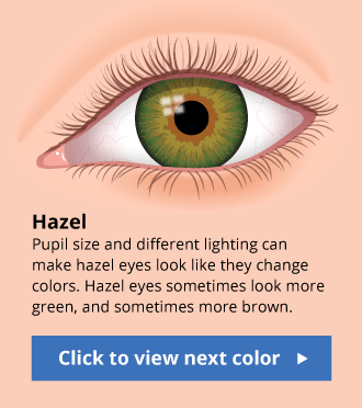 The Human Eye Color Chart in 2019 | Eye color chart, Hazel ...