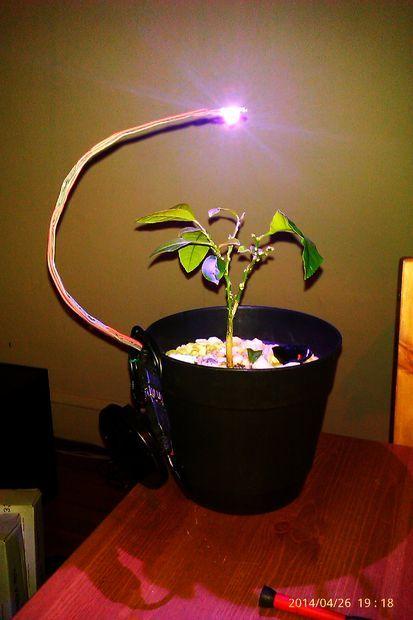Battery Powered Led Grow Light Grow Lights For Plants 400 x 300