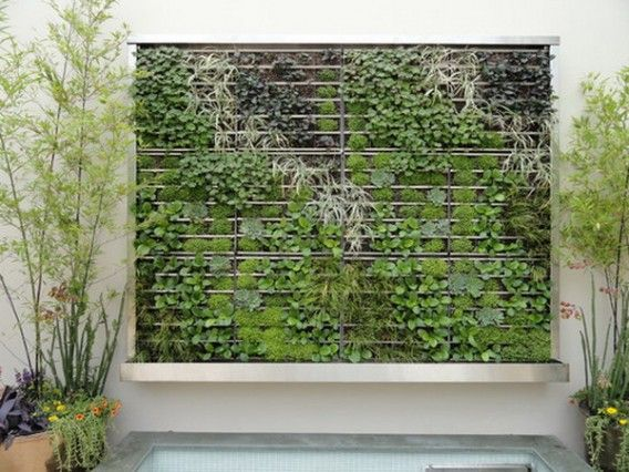 The Inspired of Green Vertical Wall Garden Patio