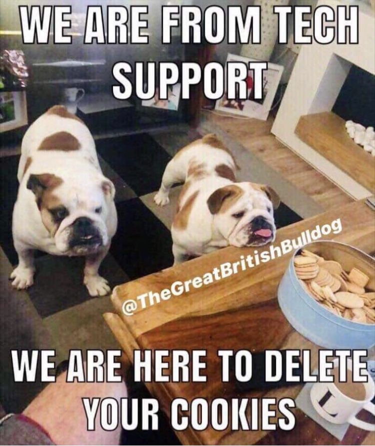 Tail Wagging Doggo Memes 32 Dog Memes In 2021 Dog Jokes Funny Animal Jokes Dog Memes