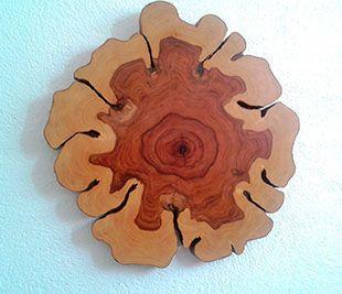 EGA Comercio de la Madera trozo de madera