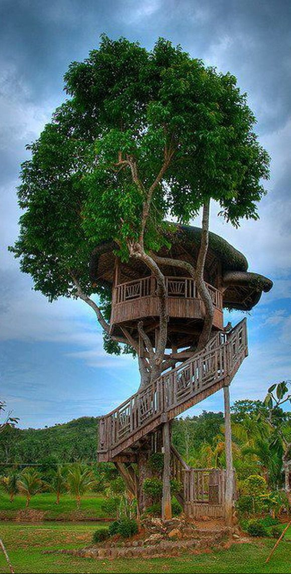 High rise tree house in Philippines http://en.directrooms ...