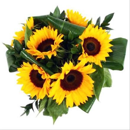 Sunflowers Gift Wrapped Ordering Wedding Flowers Online Flower Delivery Sunflower Gifts