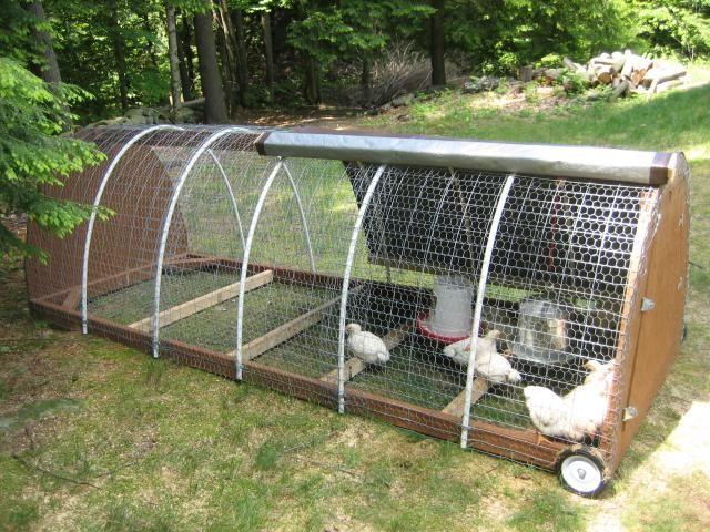 Pollai mobili ~ Breeding pens chicken ideas pollaio galline e