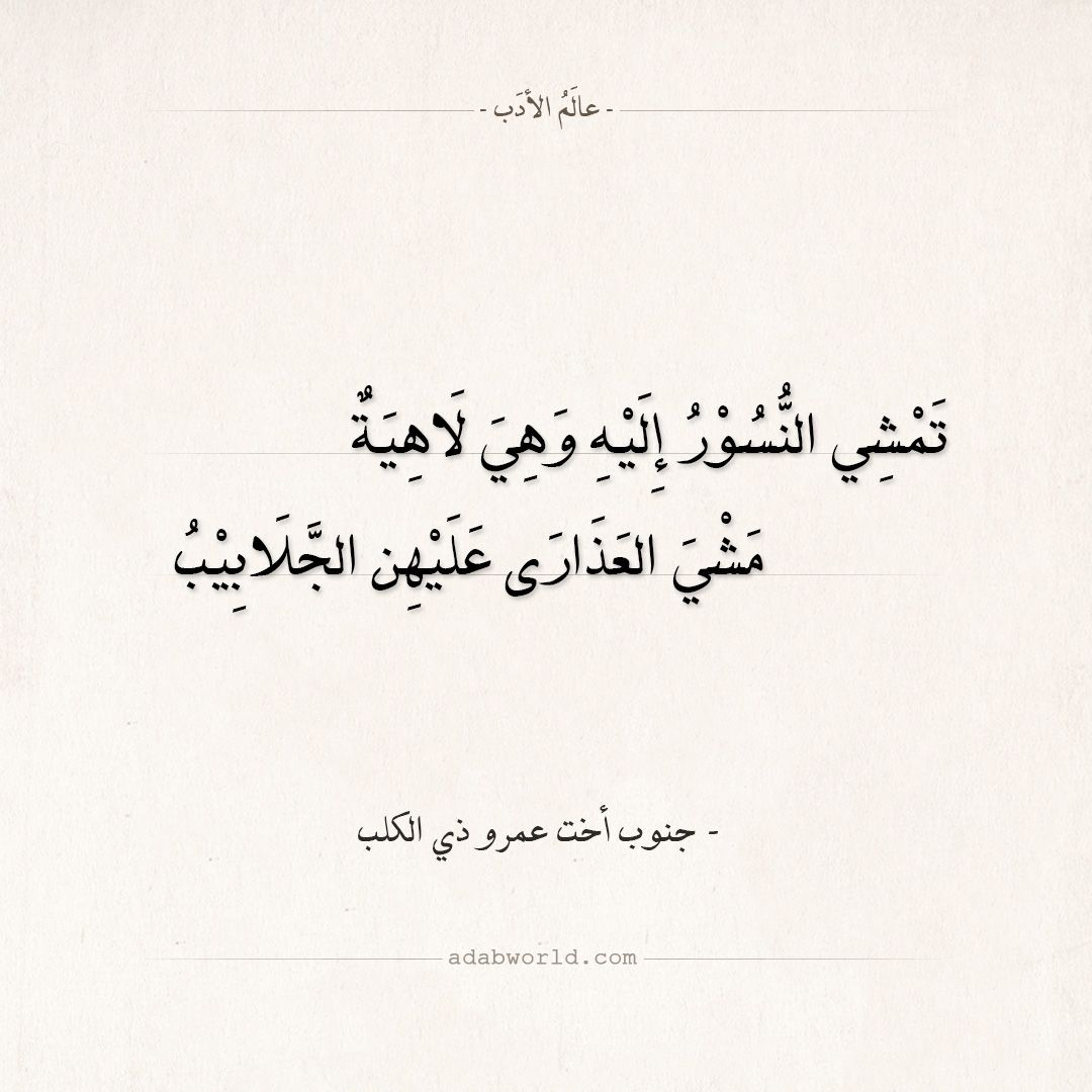 شعر رثاء جنوب أخت عمرو ذي الكلب عالم الأدب Arabic Calligraphy Calligraphy
