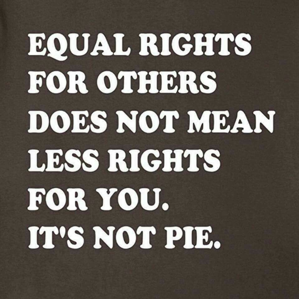 Equality Quotes: Feminist Quotes, Equal Rights, Equality, Feminism
