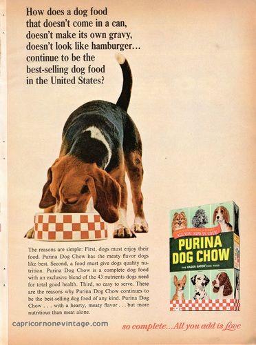Vintage 1965 Purina Dog Chow Magazine Ad Mid Century Advertising