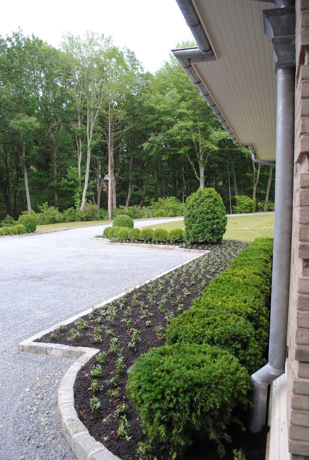 driveway edging and bush border