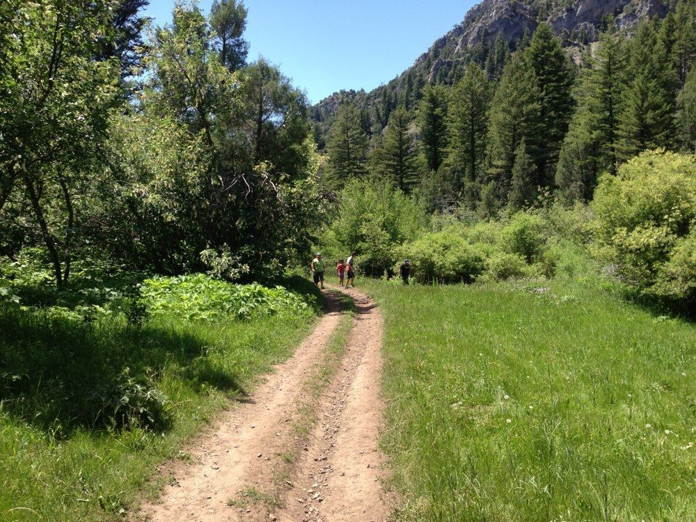 Black Canyon to Big Burns is a 10.5 mile loop trail located near Idaho Falls ,