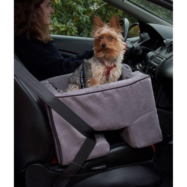 Petsmart Com Dog Summer Petssentials Pet Gear Booster