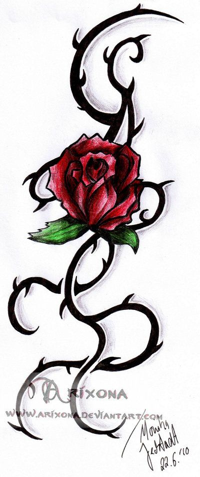 tribal rose vine red tribal rose by arixona on