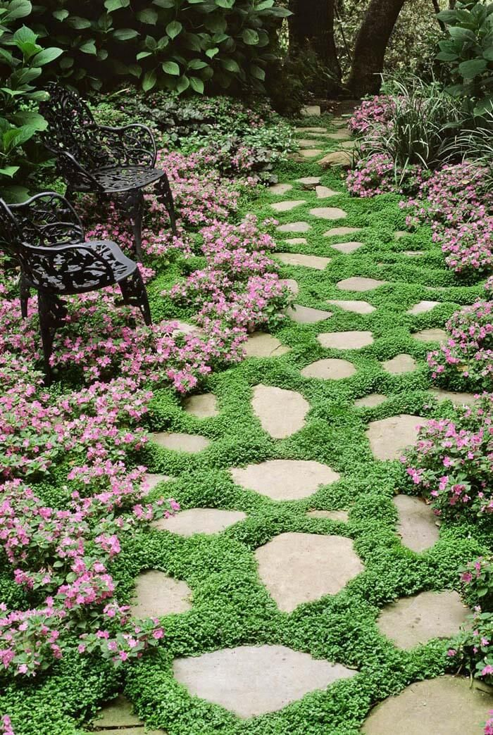 52 Fresh New Front Yard And Backyard Landscaping Ideas In 2020 Ground Cover Plants Ground Cover Flowers Ground Cover