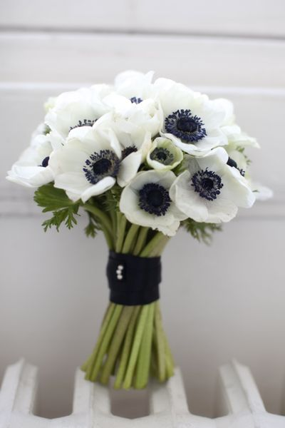White Anemone Getting Married In March See Our Seasonal Flowers Board For A Full List Of Flowers That Are A October Wedding Flowers Flowers Wedding Bouquets