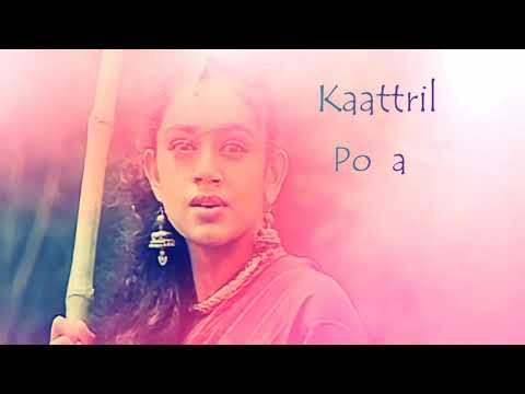 Sundari Kannal Oru Sethi Edited Version Youtube Tamil Video Songs Mp3 Song Download Music Download