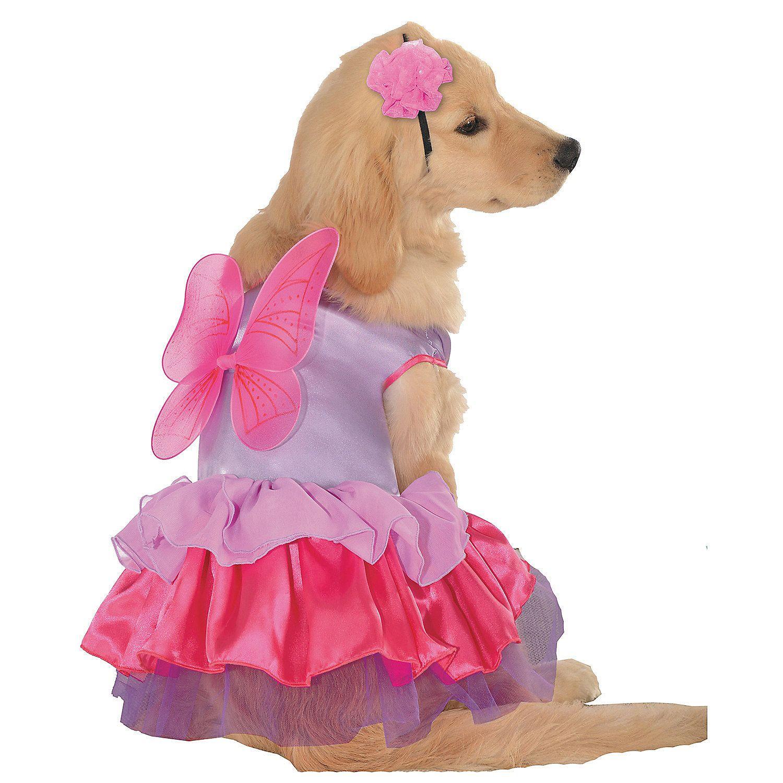 Pixie Pup Dog Costume | Pinterest