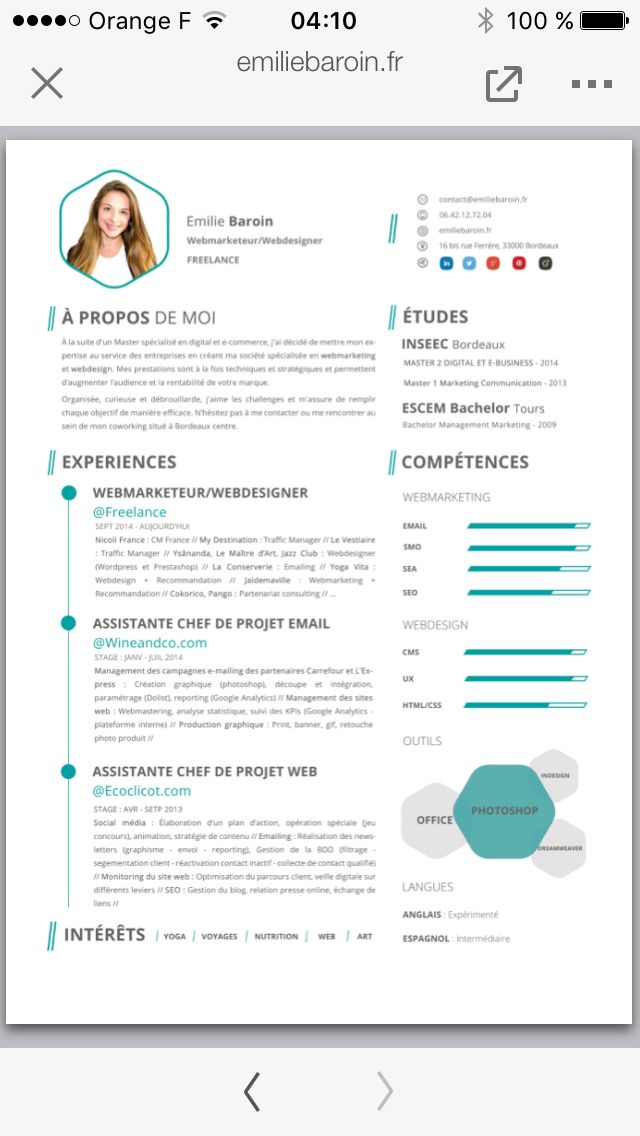 Cv Web Marketing Web Marketing Creative Curriculum It Cv