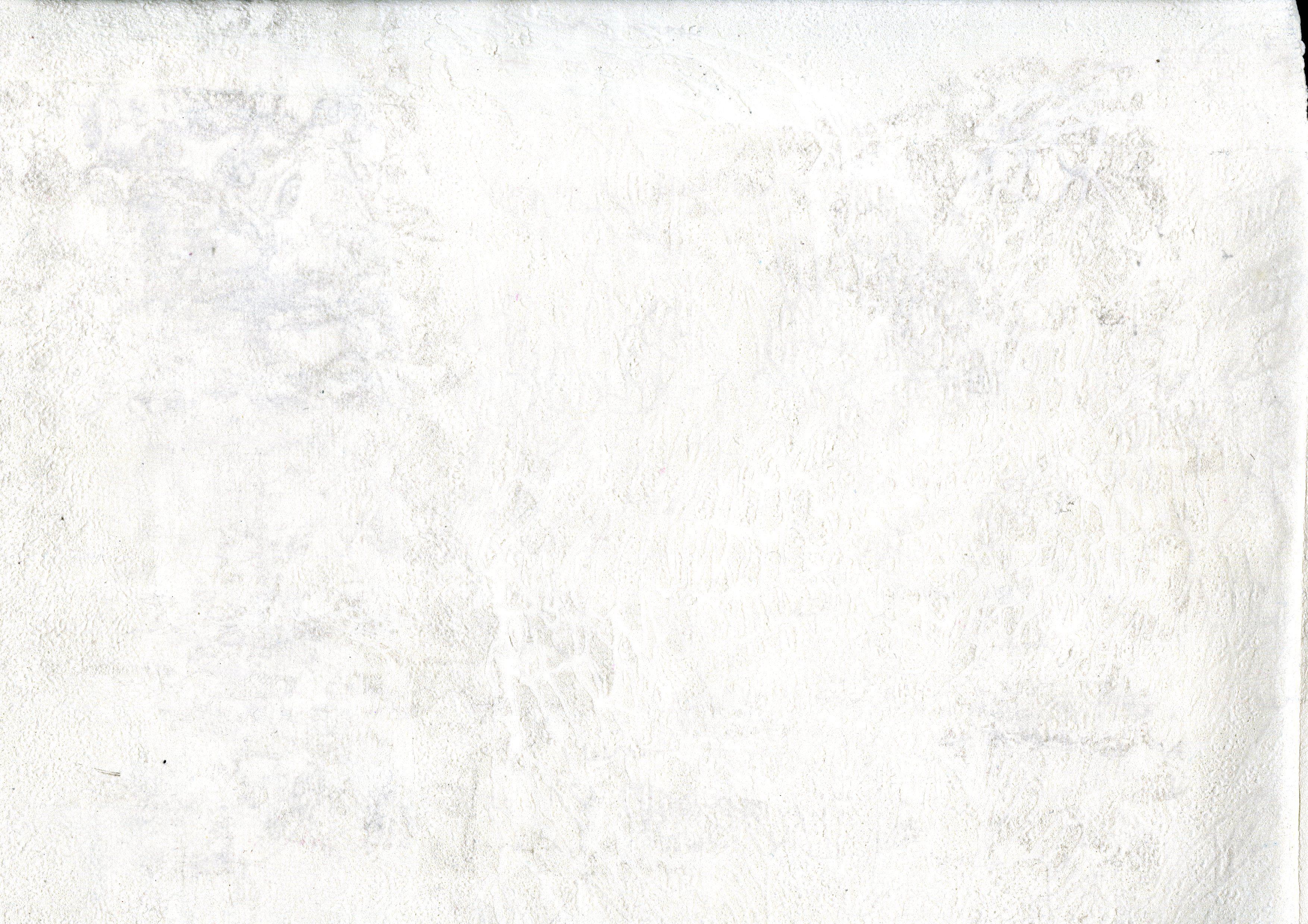 White On White Texture