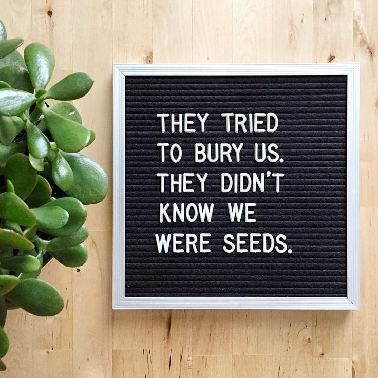"""Word Quotes : Letterfolk on Instagram: """"🌱 #letterfolkquotes"""" - Hall Of Quotes   Your daily source of best quotes"""