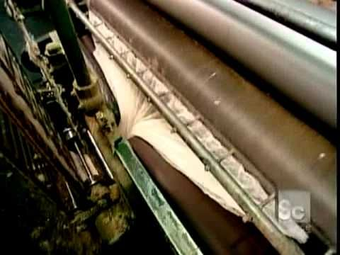 How It's Made Wool: this video shows briefly a sheep shearing and then mostly how the wool is converted from there by machinery into yarn