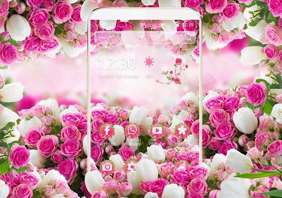 Terbaru 12 Download Gambar Bunga Mawar Pink 10 Gambar Setangkai Bunga Mawar Gambar Top 10 Jutaan File Transparan Dalam Format Gambar Bunga Bunga Mawar Pink