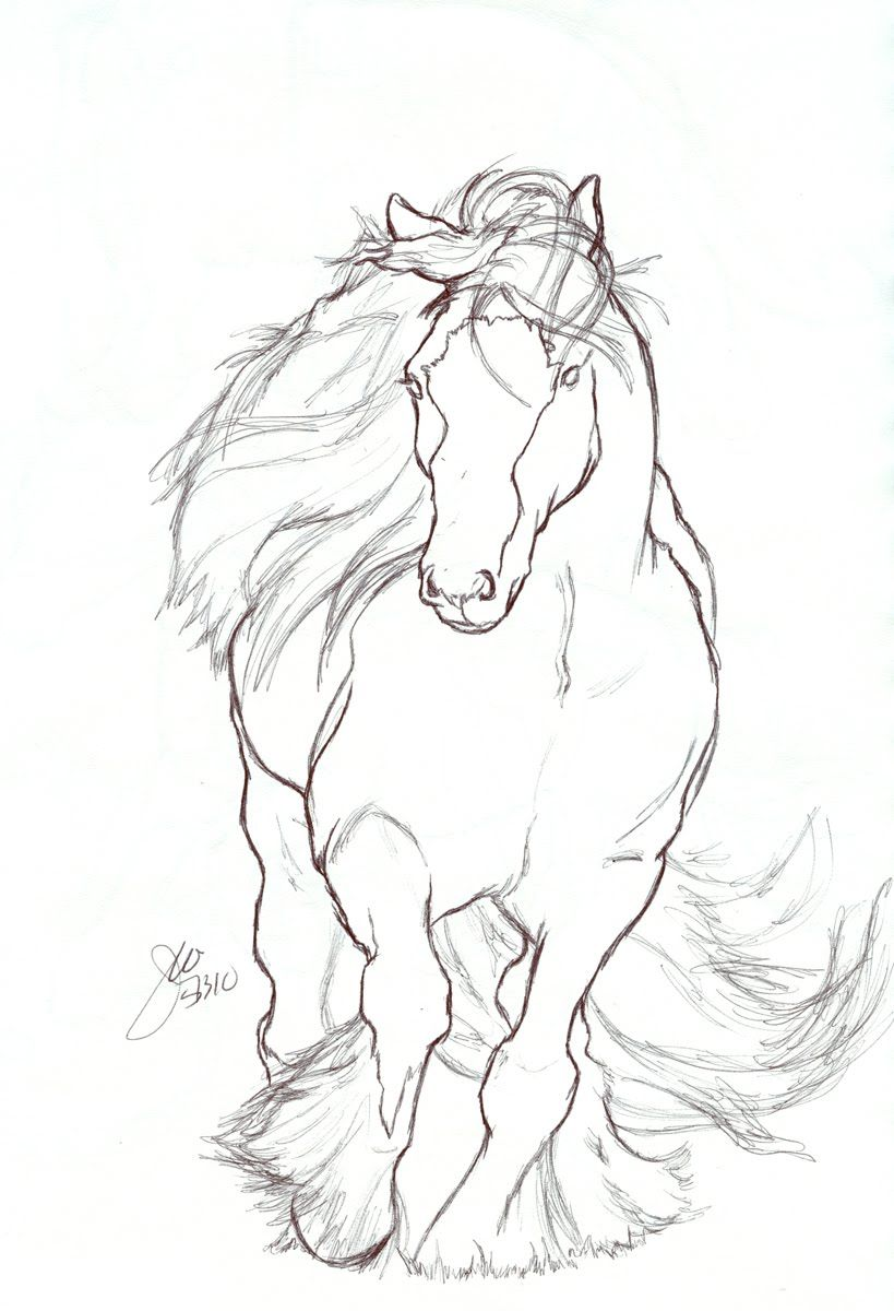 An Animator S Journey More Drawings Easy Horse Drawing Horse Drawing Horse Coloring Pages [ 1200 x 819 Pixel ]