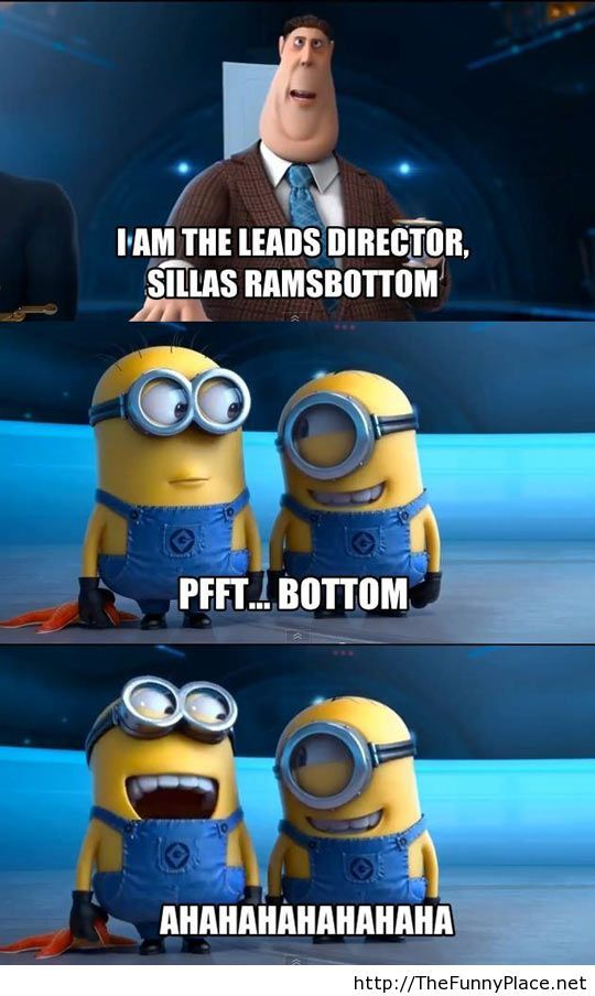 Funny Pictures About I Am The Leads Director Mr Sillas Ramsbottom., Tagged  With Bottom, Despicable Me, Minions, Sillas Ramsbottom Posted In Gags