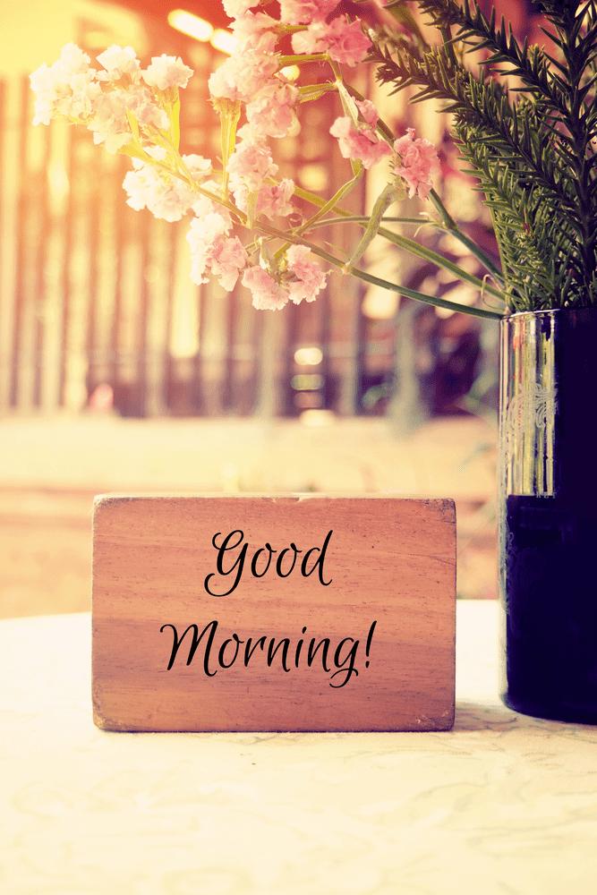 Good Morning Images Hd Morning Goodmorning Goodmorningpost Goodmorningquot Good Morning Wishes Friends Good Morning Rose Images Good Morning Images
