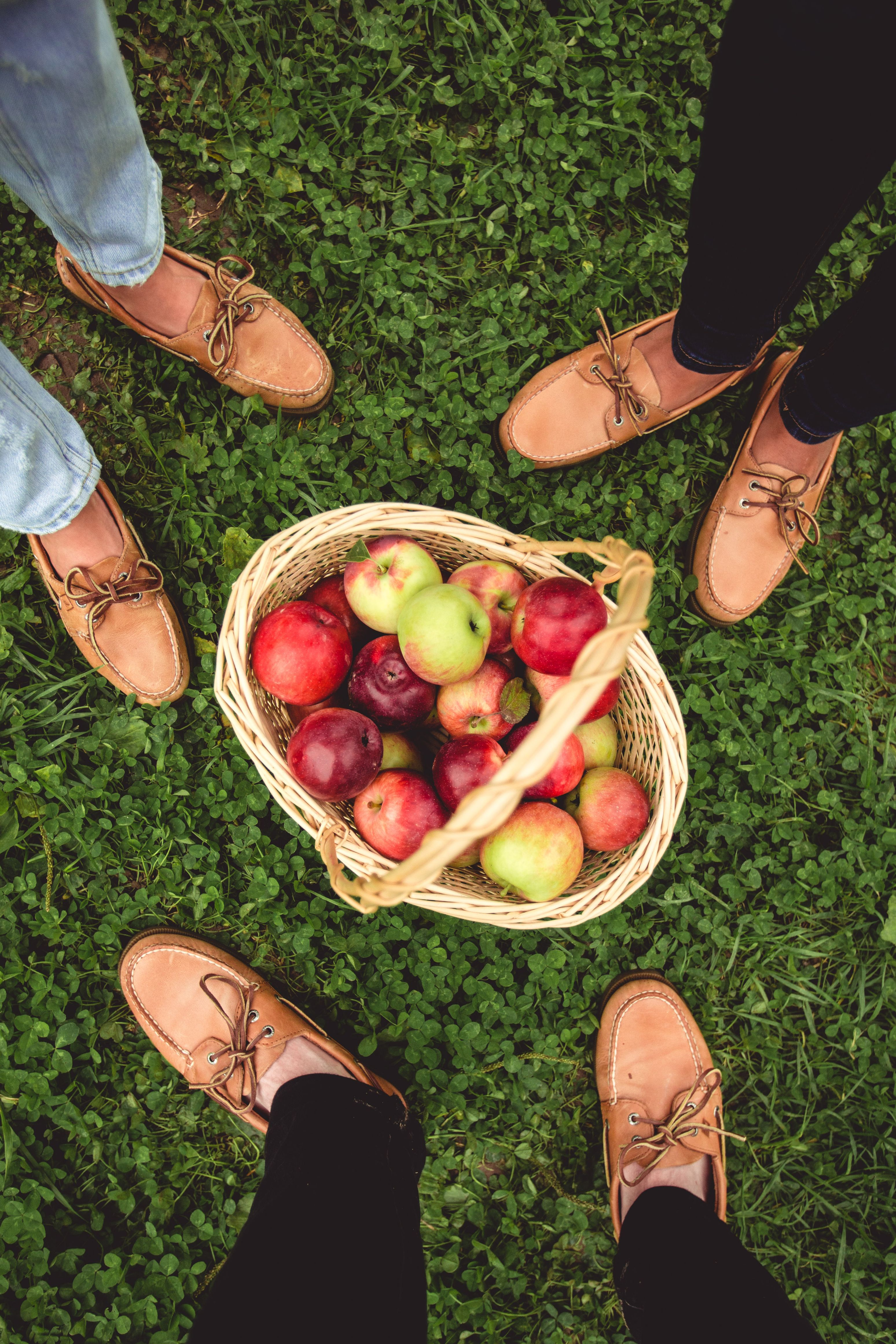f6e6fbce9ca Apple picking staple  the Sperry Authentic Original Boat Shoe. The one that  started it all