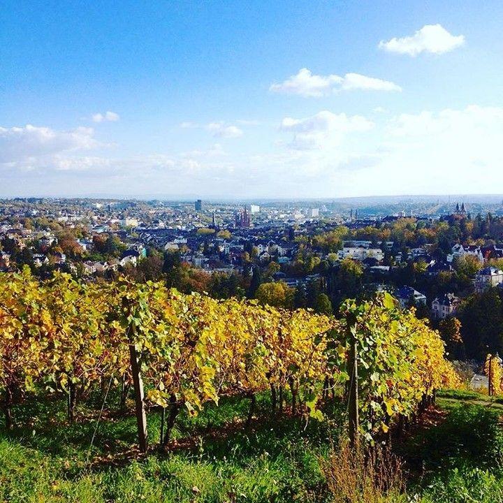 Bb Wiesbaden neroberg weinberge wein goldenerherbst vonoben wiesbaden