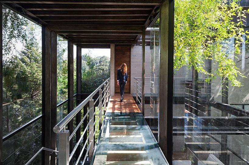 grupo-arquitectura-la-casa-en-el-bosque-mexico-city-house-in-the-forest-designboom-02