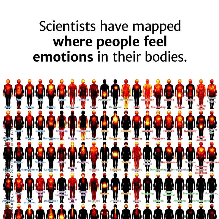 15+ How emotions are mapped in the body ideas in 2021