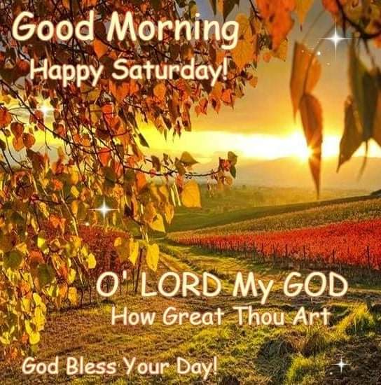 Good Morning In The Midwest October 10 The Gardener S Shed Good Morning Happy Saturday Happy Saturday Images Good Morning Saturday
