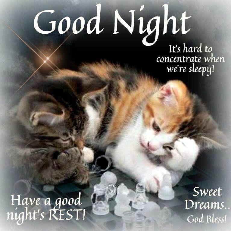 The Originals Good Night Irene