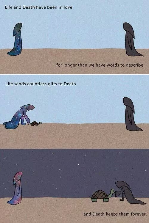 My Favorite Life And Death Funny Memes Life