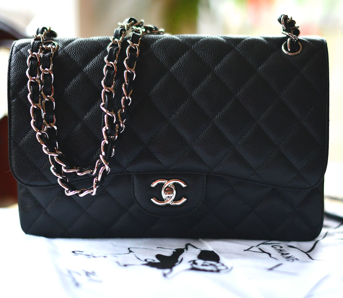 Chanel: Bags of Dreams!