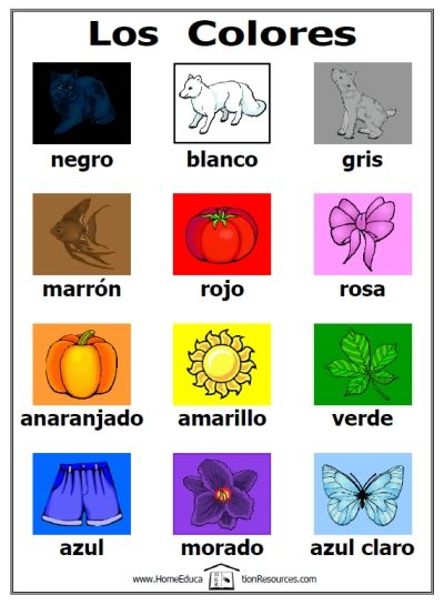 Free printable los colores colors in Spanish poster for kids and ...