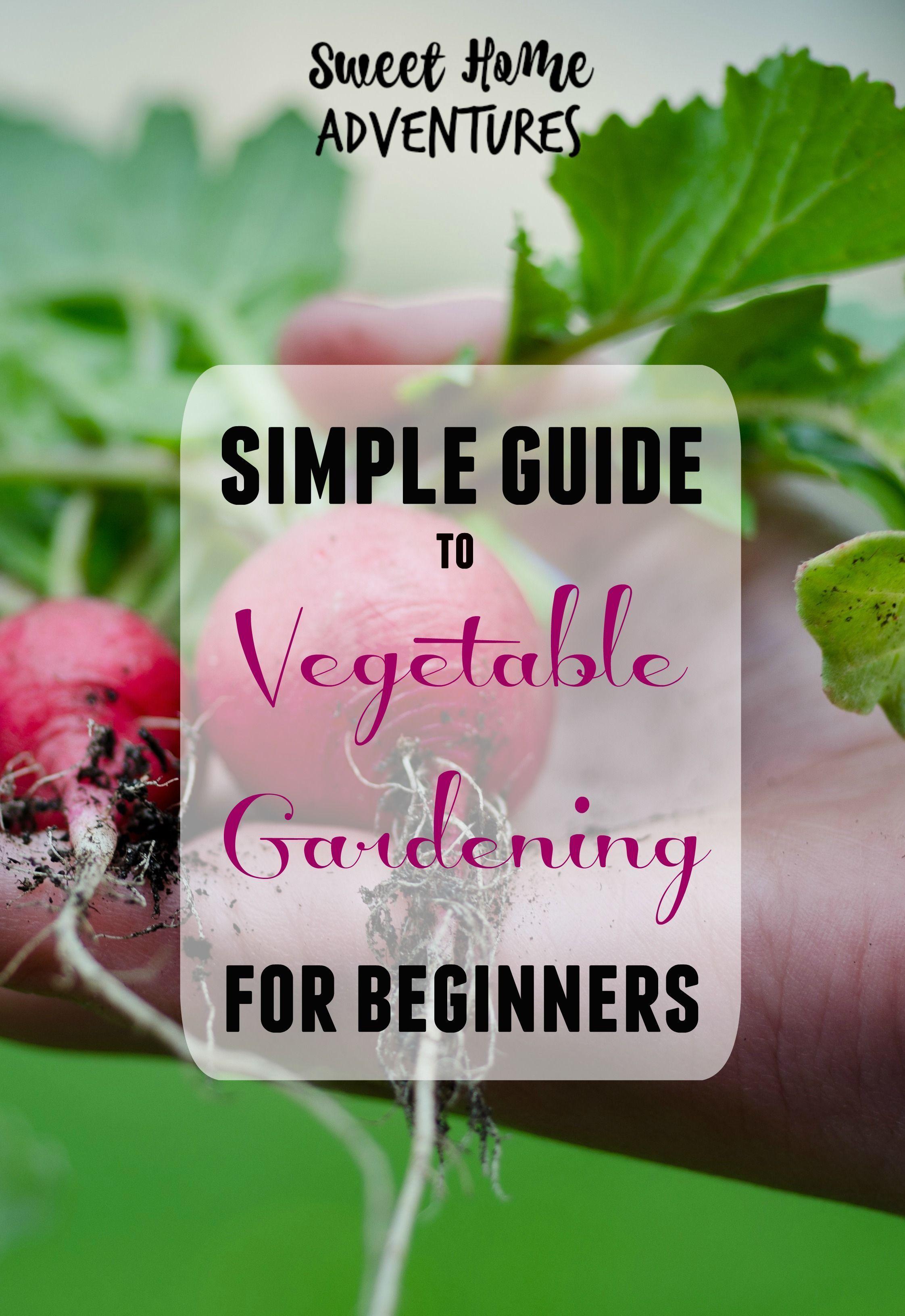 urban gardening book