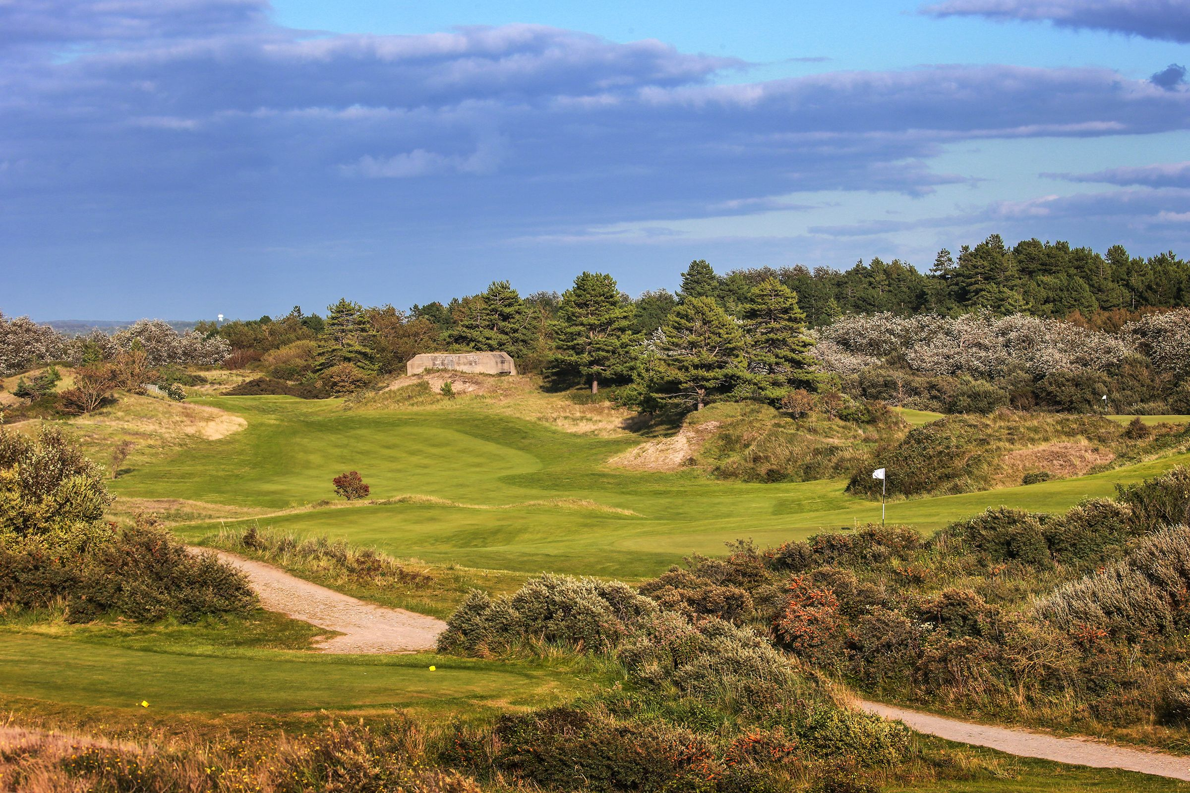 The rugged looking 8th hole at Belle Dune | Dune, Golf breaks