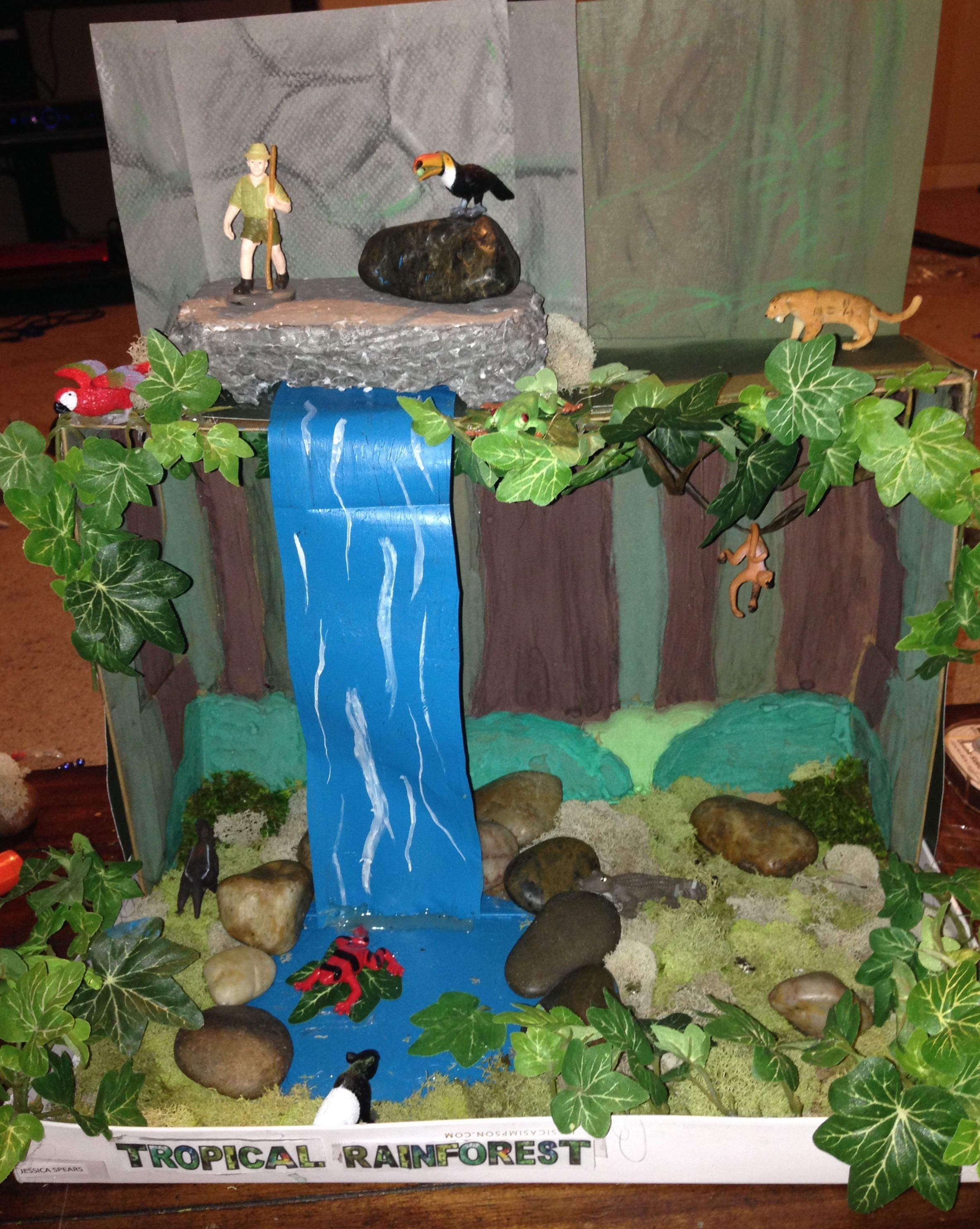 Shoe Box Diorama Of The Rainforest My Daughter With Help From Me And Her Dad Made For School