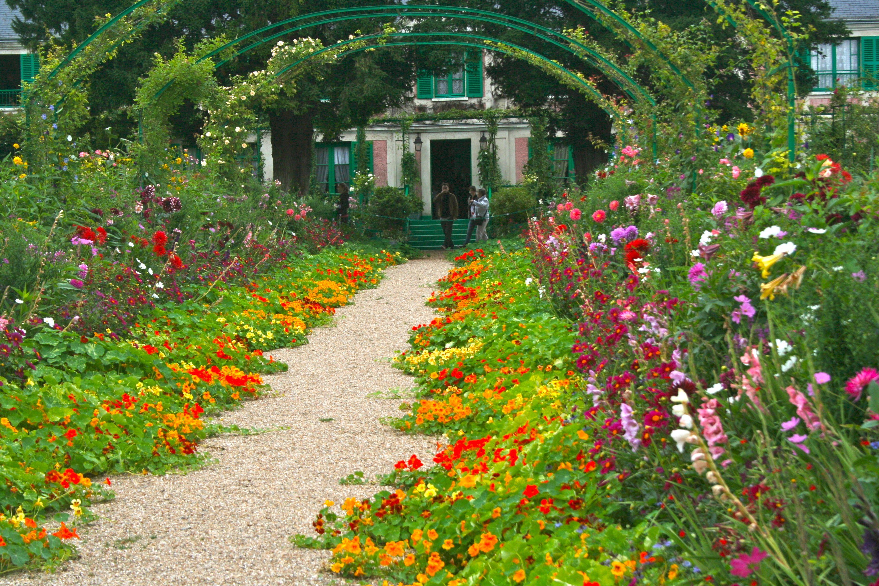 image result for nasturtium and zinnia grow pinterest zinnias and gardens. Black Bedroom Furniture Sets. Home Design Ideas