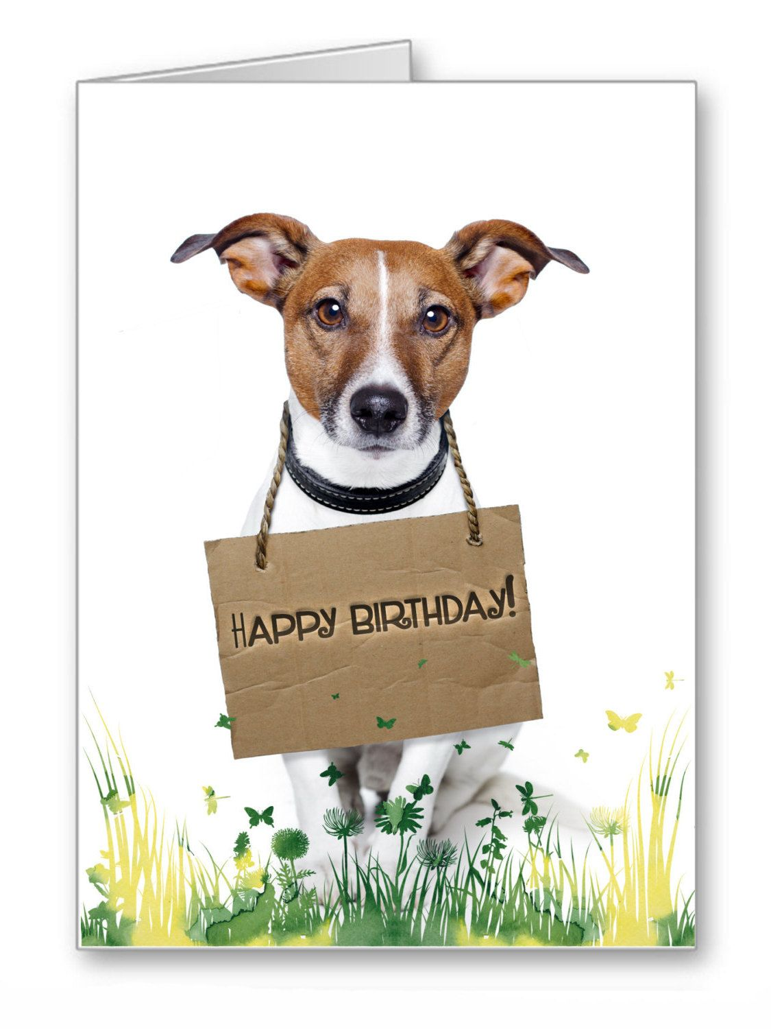 Happy Birthday Cards With Dogs Funny Pets Happy