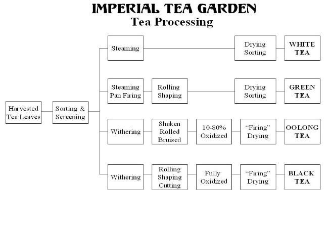 Tea Processing Flow Chart Food Pinterest Teas And Food